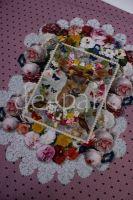 import__vyr_2376IMG_0062.jpg