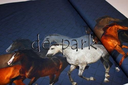 Koně na modré - bordura