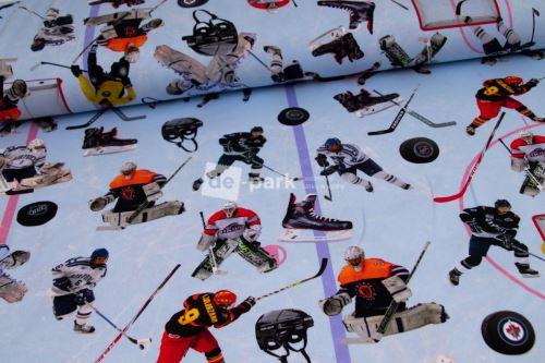 DESIGNED BY DE-PARK - úplet Hokej