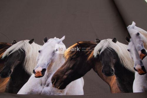 Úplet - Bordura - Koně